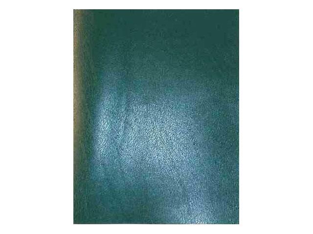 Тетрадь А5  48л бумвинил зеленая Prof Press 48-9535