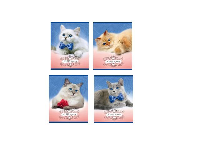 Тетрадь 24л клетка Счастливые кошки Prof Press 24-2550