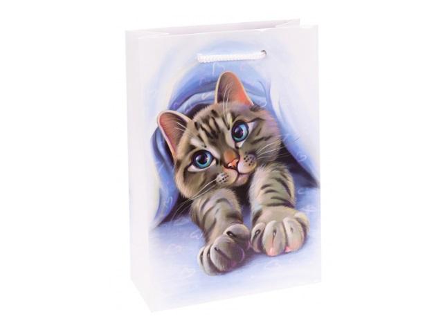 Пакет подарочный бумажный 14*20*6.5см Miland Славный котик ППК-6270