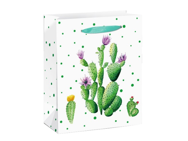Пакет подарочный бумажный 18*23*10см Miland Кактус с цветочками ППД-9611