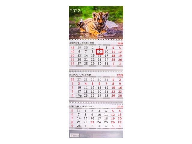 Календарь квартальный 2022 3-х блочный Prof Press Год тигра КК-0334