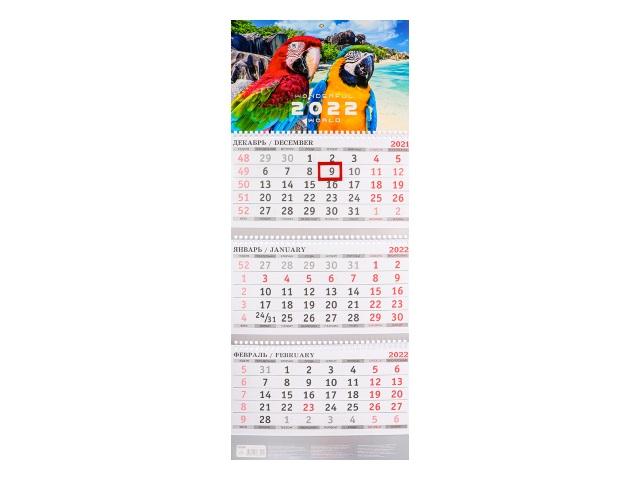 Календарь квартальный 2022 3-х блочный Prof Press Два ярких попугая КК-3320