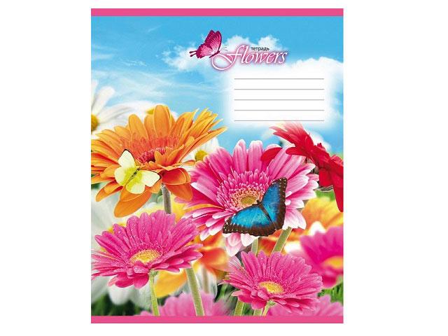 Тетрадь в клетку 24 листа Весеннее поле, Prof Press 24-5153