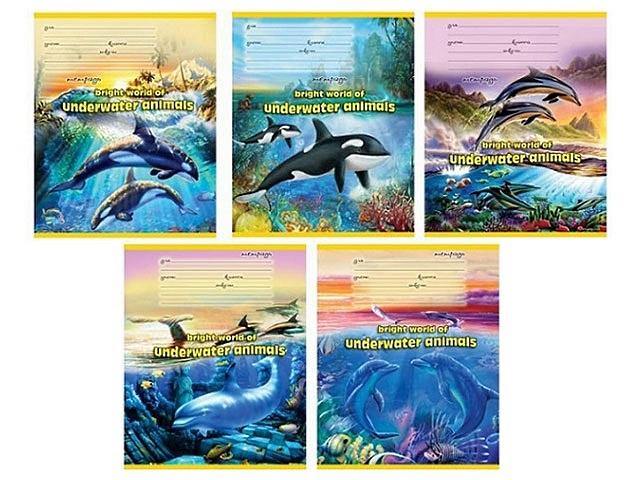 Тетрадь в клетку 18 листов Косатки и дельфины, Prof Press 18-2701
