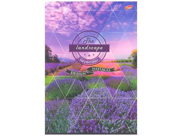 Книга канцелярская  96л м/обложка Природа ЕАС-7899-3