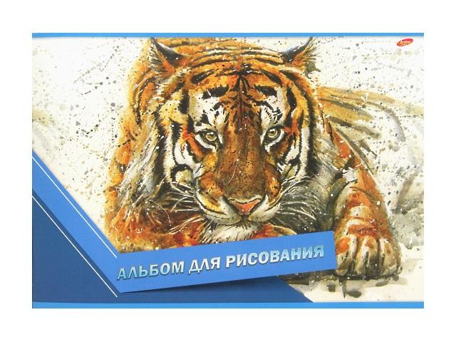 Альбом 20л А4 на скобах Тигр Академия Групп ЕАС-8567