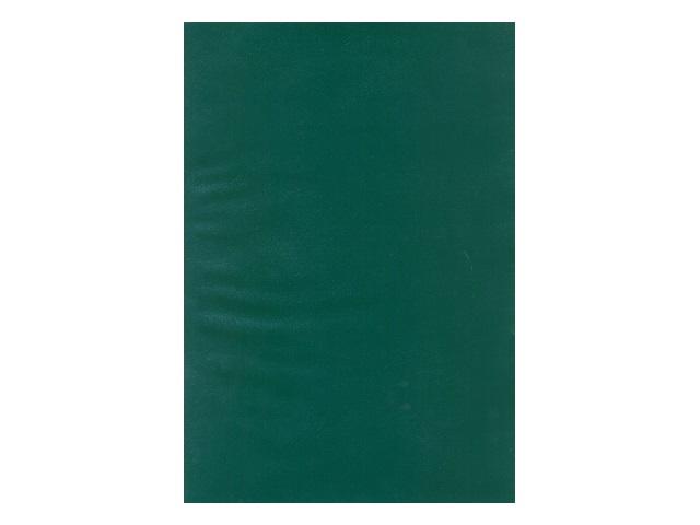 Книга канцелярская  96л м/обложка бумвинил цветная ЕАС-5905-3