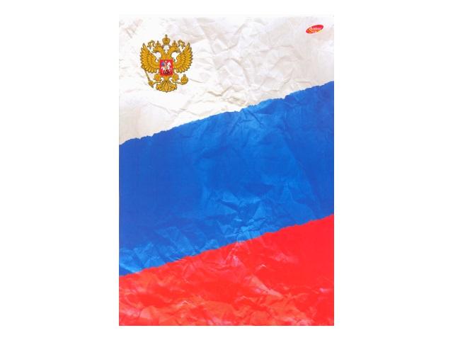 Книга канцелярская А4 96 листов, мягкая обложка, Российский флаг, Академия Групп