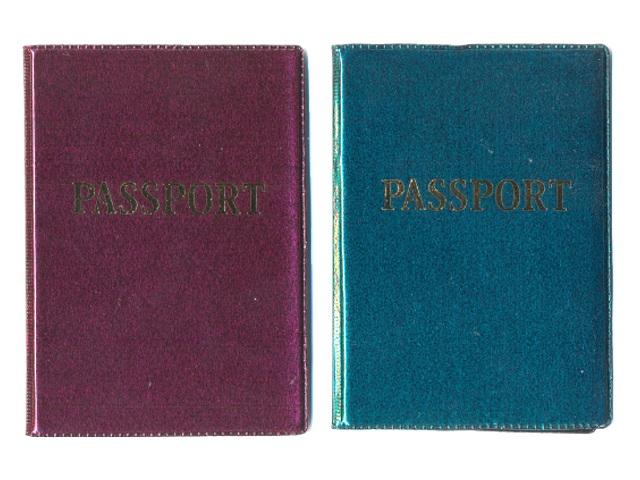Обложка для паспорта ПВХ глянец латинский 1.04