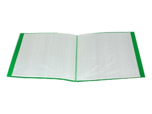 Папка с файлами 40 файлов А4 зеленая, Proff Next DB40AB-03
