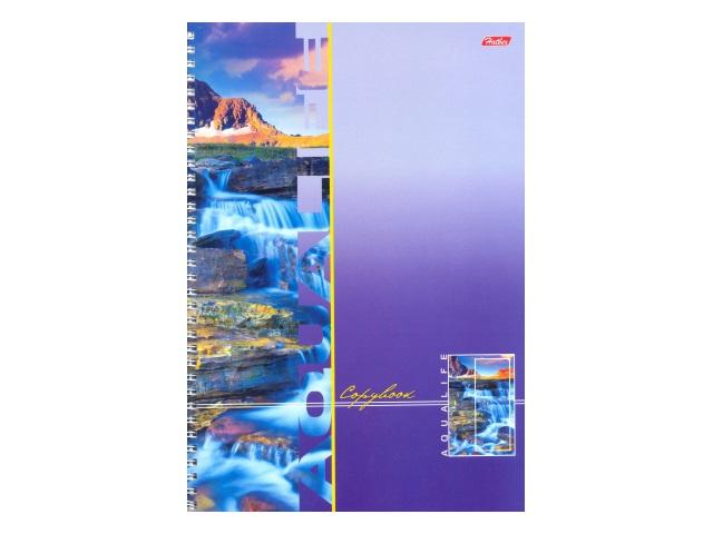 Книга канцелярская А4 96 листов, спираль сбоку, мягкая обложка, Аквалайф, Hatber 96Т4В1