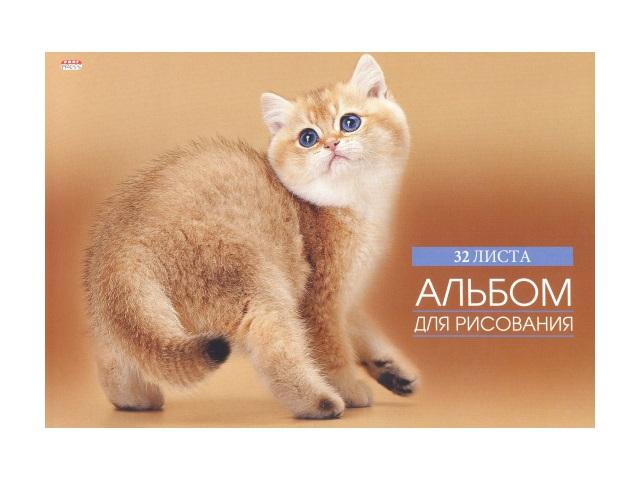 Альбом 32л А4 клееный Котенок на бежевом 100 г/м2 Prof Press 32-2624