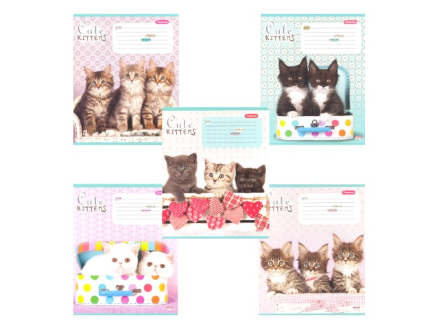Тетрадь 24л линия Милые котята-4 Prof Press 24-3451