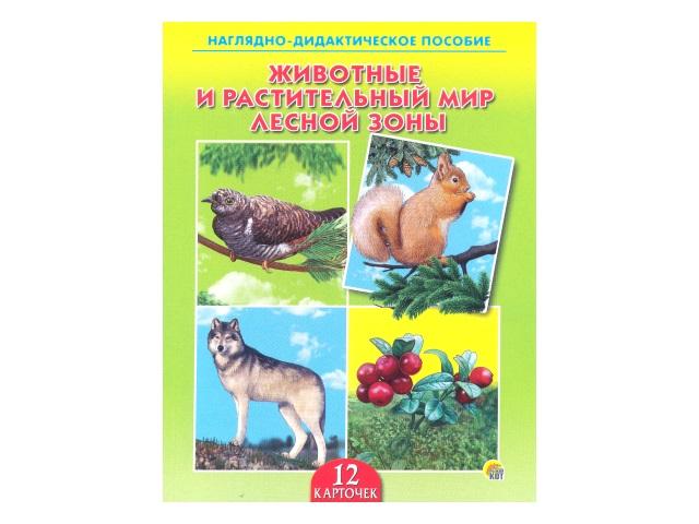Обучающие карточки Животные и растительный мир лесной зоны ПД-6401