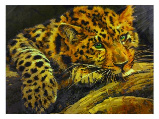 Картина по номерам 30*40см Леопард Schreiber S-3777