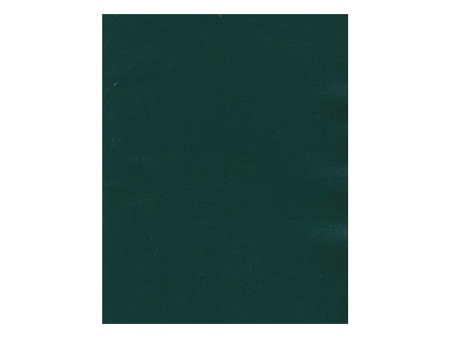 Тетрадь  48 л  #  бумвинил зеленая 48Т5бвB1