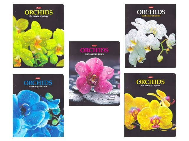Тетрадь  48 л  #  Орхидеи 3D 48Т5олВ1_16464