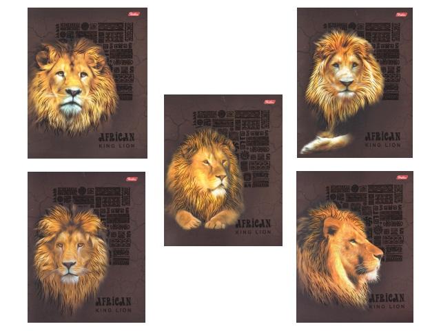 Тетрадь  48 л  #  King Lion 3D 48Т5офлВ1_15917