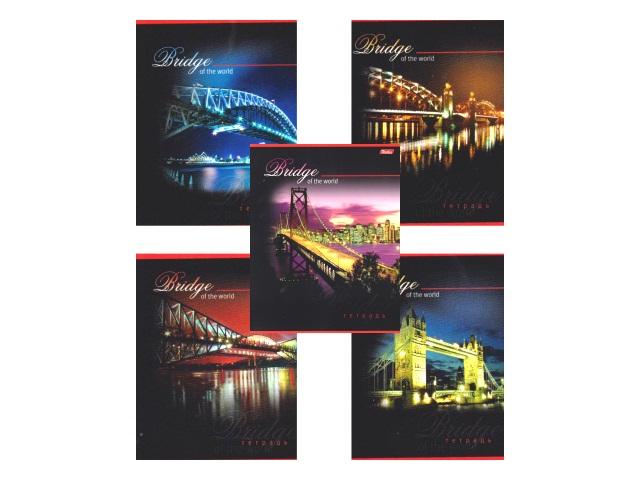 Тетрадь  80 л  #  Bridge 80Т5вмB1_08042