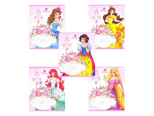 Тетрадь 12л линия Принцессы Prof Press 12-9492