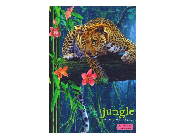 Записная книжка А6 тв/переплёт  64л Леопард Prof Press 64-8221