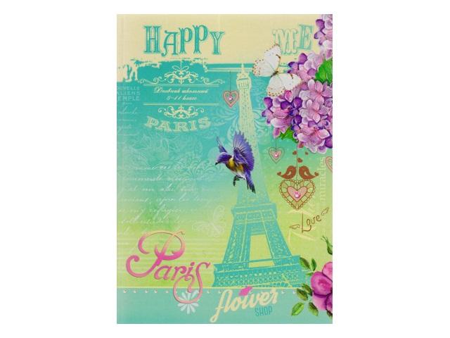 Дневник 5-11кл интегр/обложка Бирюзовая Эйфелева башня Prof Press Д48-1625
