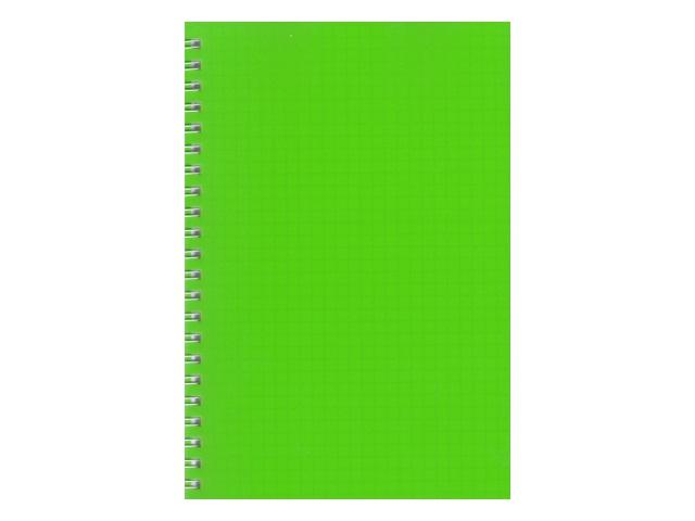 Блокнот А5 спираль сбоку пласт/обложка  60л Зеленый Prof Press 60-7874