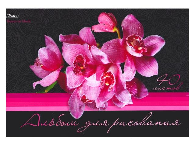 Альбом 40л А4 клееный Цветы на черном 120 г/м2 Hatber 40А4вмAк_14182