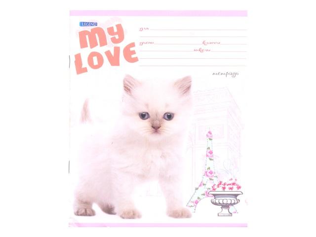 Тетрадь 12л линия Любимый кот Legend 12-3673