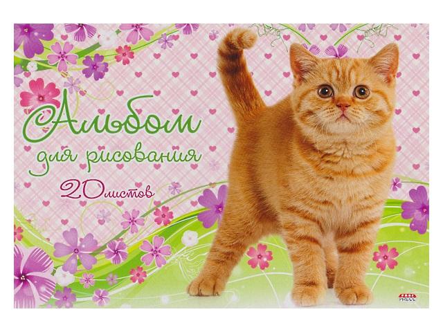 Альбом 20л А4 клееный Мой любимый котенок 100 г/м2 Prof Press 20-2612