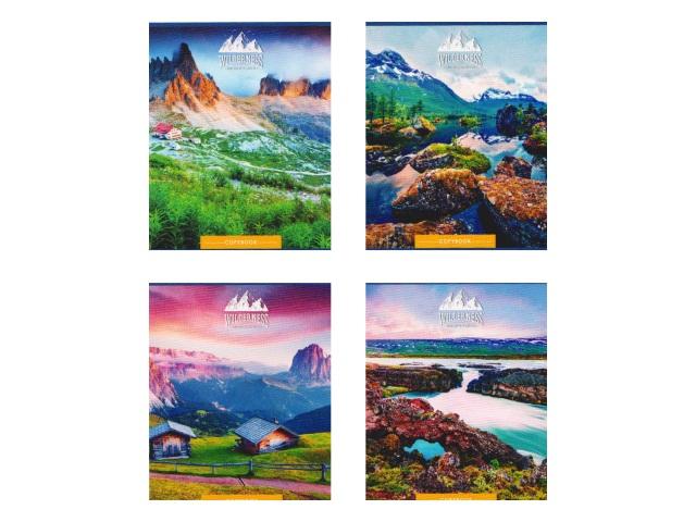 Тетрадь 80л клетка Красочные пейзажи Prof Press 80-0383