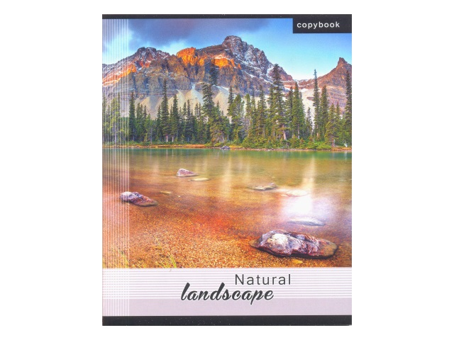 Тетрадь 96л клетка Landscapes WM 002005900