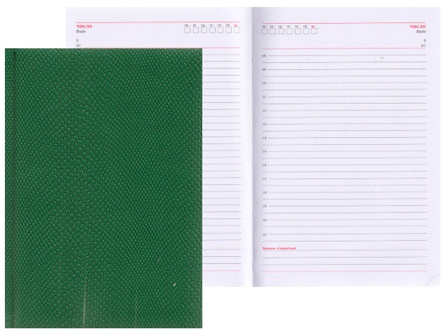 Ежедневник А5 кожзам 160л Питон зеленый Prof Press 160-0681