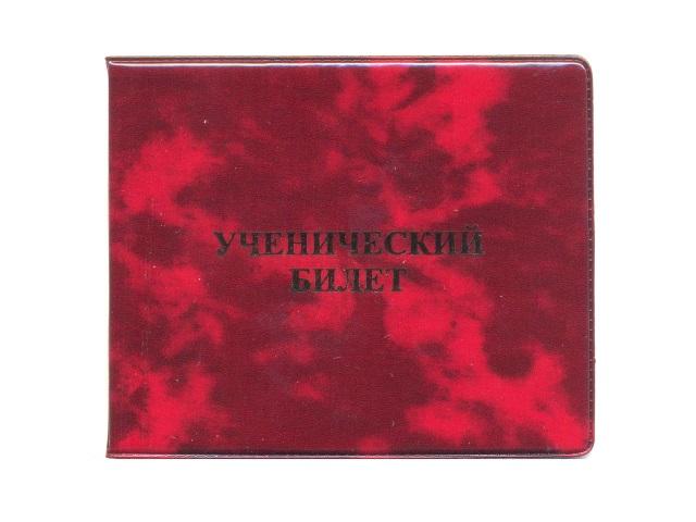 Обложка для ученического билета ПВХ глянец Имидж 4.03
