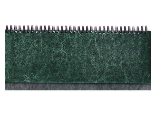 Планинг кожзам 56л Виладж зеленый Prof Press 56-4228