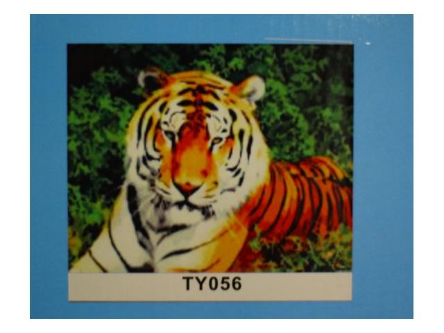 Картина по номерам 40*50см Большой тигр Рыжий кот TY056