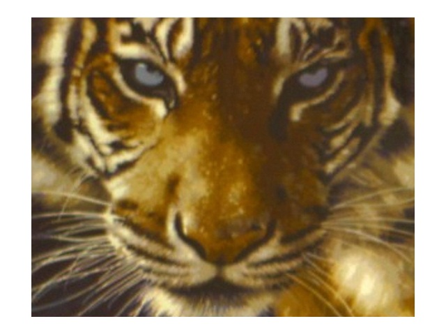 Рисование по дереву по номерам 30*40см Взгляд тигра Рыжий кот AWD3014