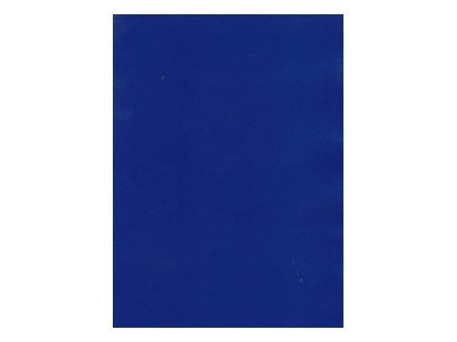 Тетрадь А4  48л бумвинил Синяя Profit 48-1141
