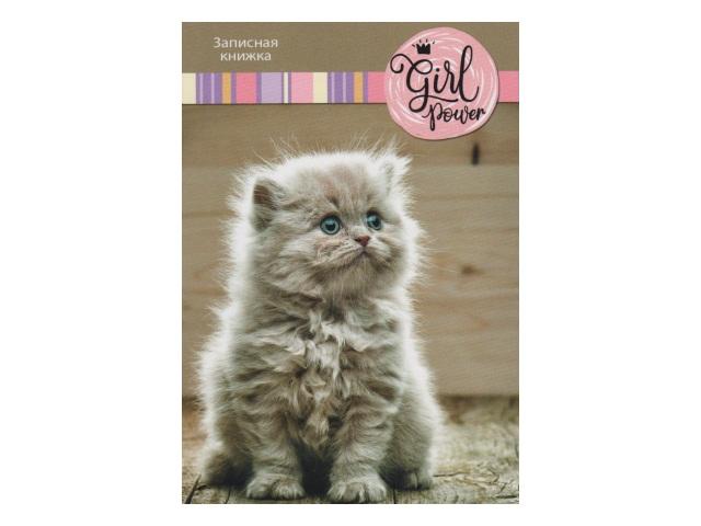 Записная книжка А6 тв/переплёт  64л Cute Kitten WM 007003200