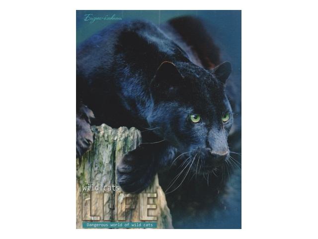 Записная книжка А5 тв/переплёт  80л Черная пантера Profit 80-4497