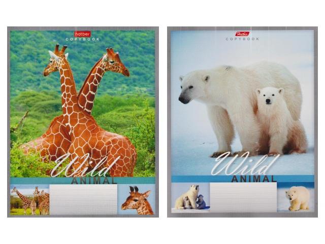 Тетрадь 24л линия Hatber Мир животных 24Т5В2