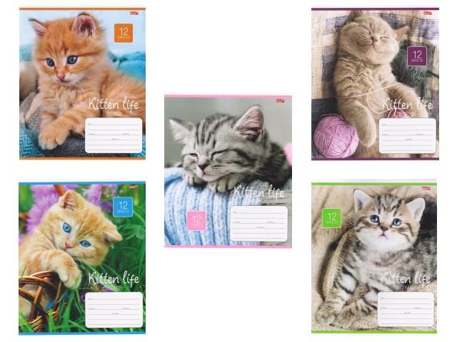 Тетрадь 12л косая линия Симпатичные котята Profit 12-1871