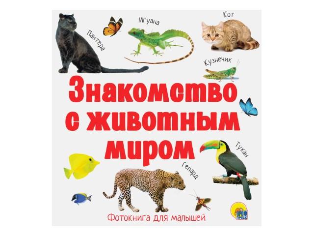 Книга А5+ Знакомство с животным миром Prof Press 28939 т/п