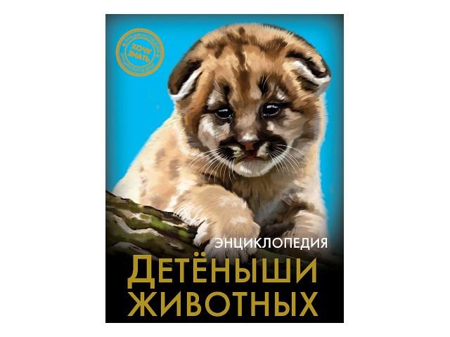 Энциклопедия А5 Хочу знать Детеныши животных Prof Press 25803 т/п