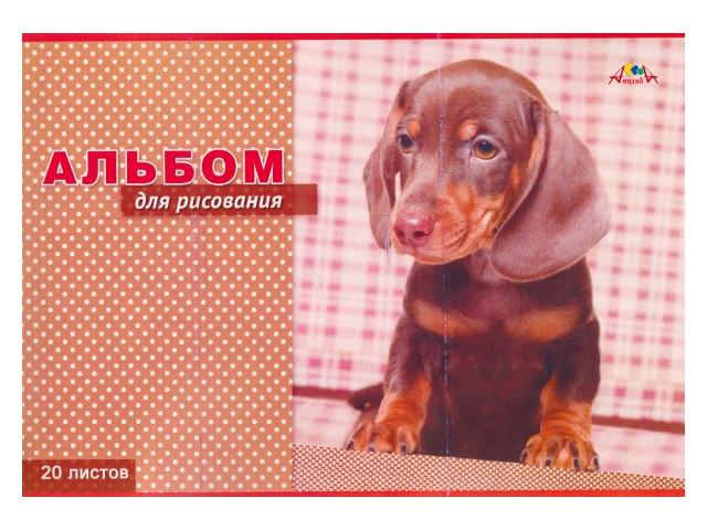 Альбом 20л А4 Апплика на скобах Коричневый щенок 100 г/м2 С0218-59