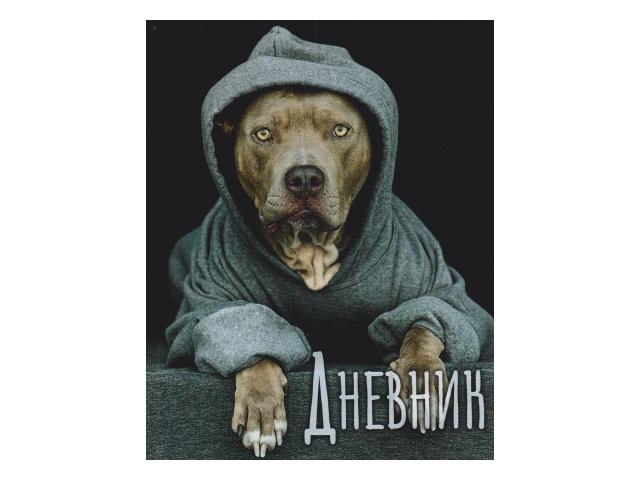 Дневник 5-11кл тв/переплёт Dogs in the hood ЕАС-DDH6