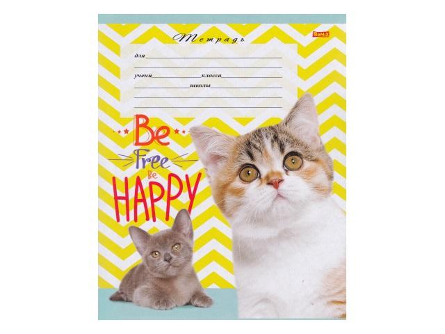Тетрадь 12л клетка Счастливые коты Remix 12-3990
