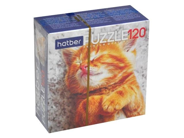 Пазлы  120 деталей Hatber Котиков много не бывает 120ПЗ5_19065