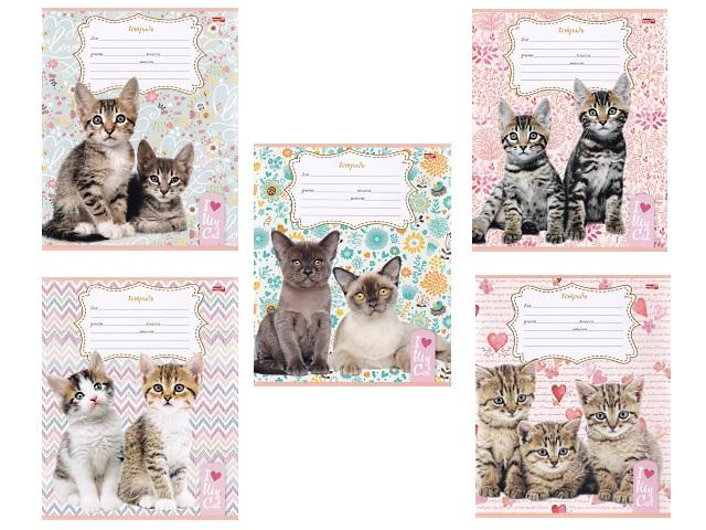 Тетрадь 24л клетка Милые котята-5 Profit 24-3595
