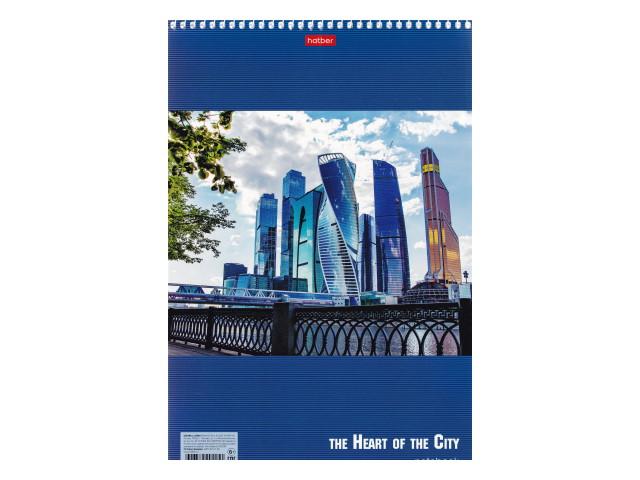 Блокнот А4  60л Hatber спираль м/обложка Office City 60Б4В1сп_10990